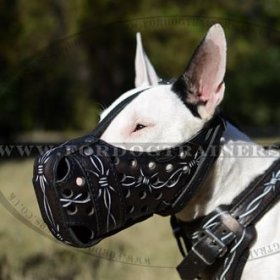 English Bull Terrier Muzzle Hand Painted Leather