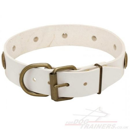 White German Shepherd Leather Dog Collar with Brass Medals