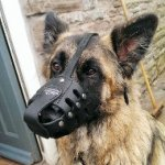 German Shepherd Dog Muzzle for Long Nosed Dog UK Best Shape