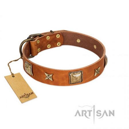 """Celtic Tunes"" Elegant Tan Leather Studded Dog Collar FDT Artisan"