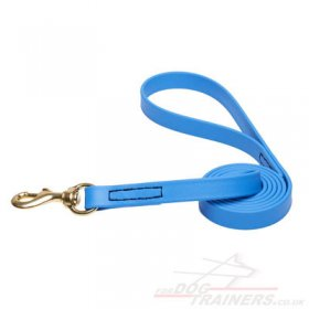 NEW! Bright and Strong Blue Dog Leash Biothane