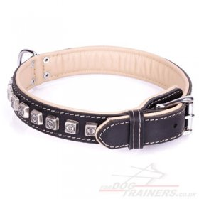 """Cube"" Luxury Black Leather Dog Collar With Brass Studs"