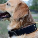 Wide Dog Collar 2-ply Leather for Golden Retriever - Best Price!