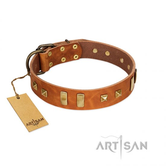 Tan Leather Dog Collar with Studs and Plates