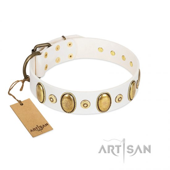White Dog Collar with Studs