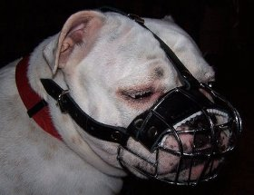 Bestseller Dog Muzzle Wire Basket for Bulldog Short Snout