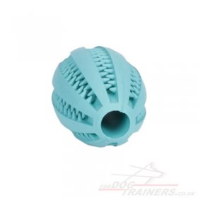 "Durable Dog Dental Chew Toy ""DENTA FUN RUGBY BALL"""