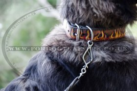 Large Leather Dog Collar for Strong Dog Control