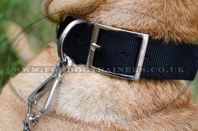 Doberman Collar for Dogs Style | Nylon Dog Collar with Buckle