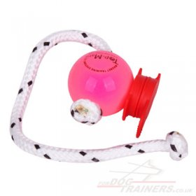 NEW! Pink Dog Ball Thrower & MAXI Power-Clip