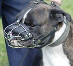 Boxer Muzzle UK Bestseller | Best Wire Dog Muzzle for Boxer