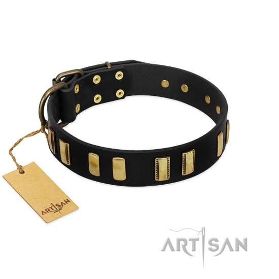 Black Dog Collar with Studs