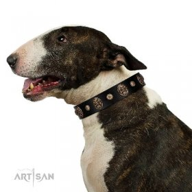 Extravagant Black Leather Dog Collar with Skulls FDT Artisan