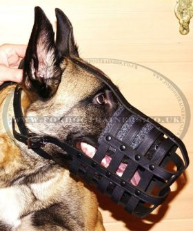 Strong and Soft Leather Dog Muzzle UK Bestseller