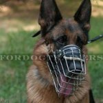 German Shepherd Muzzle that Allows Drinking Super Ventilated