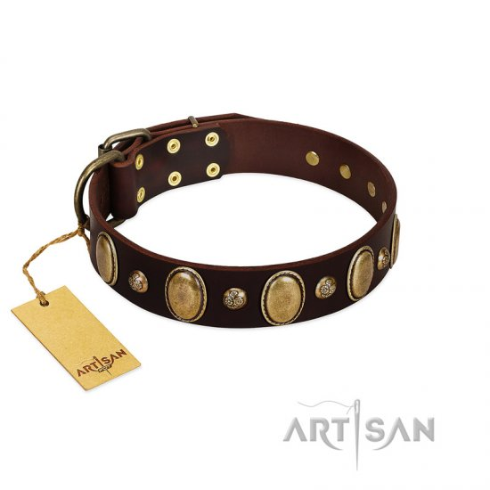 Brown Studded Dog Collar by FDT Artisan