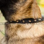 Collars for Dogs with Spiked Design | Belgian Malinois Collars