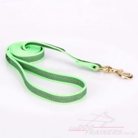 Top-Quality Nylon Training Lead For Dogs Ultramodern Design
