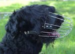 Wire Basket Dog Muzzle for Black Russian Terrier