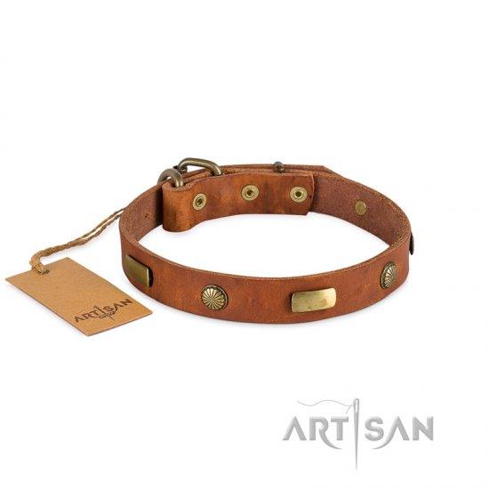 Light Tan Leather Dog Collar by FDT Artisan