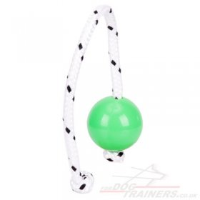 NEW! Top-Matic Fun-Ball Mini for Small and Medium Dogs