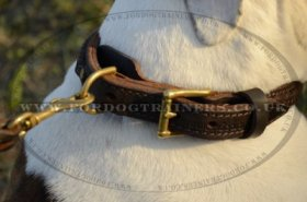 """Easy Use"" Best Dog Collar For American Bulldog Walk And Training"