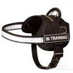 The Best Reflective Dog Harness with High Vis Strap and Patches