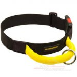 Strong Nylon Dog Collar With Handle + FREE Dental Care Ball