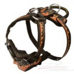 Hand Painted Designer Dog Harness for Large Dog in Flame Style