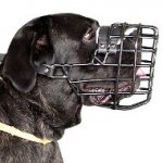 Large Dog Muzzle for Cane Corso | Cane Corso Muzzle Rubberized