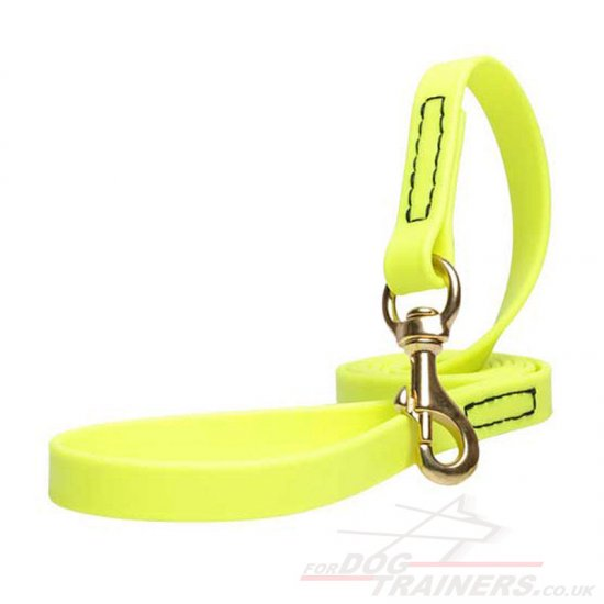 Modern Neon Yellow Dog Leash Biothane