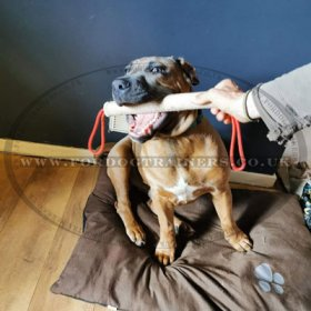 Dog Play Roll Jute for Fun Dog Games and Prey Drive