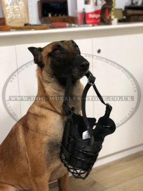 Pro K9 Dog Training Muzzle Rubberized, Leather Padded Dog Muzzle
