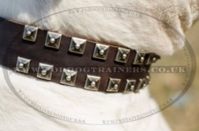 """Loving Heart"" Exclusive Leather Dog Collar For American Bulldog"