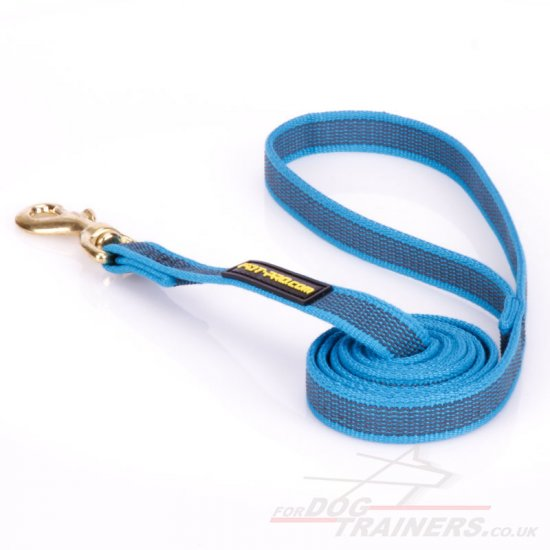 Leather Dog Lead UK