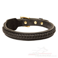 1 inch Dog Collar | Braided Dog Collar Strong and Stylish Design