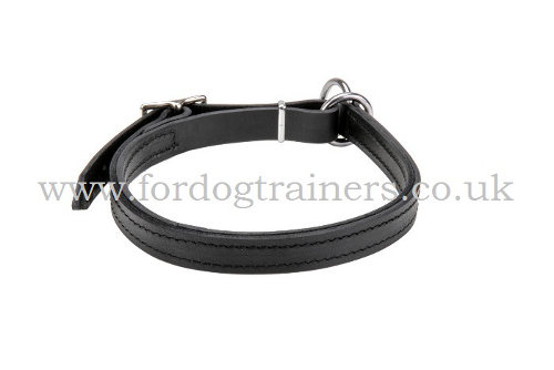 Cane Corso Choke Collar for Large Dogs