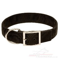 Large Nylon Dog Collar with Metal Buckle