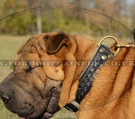Shar Pei Dogs Collars Braided Style