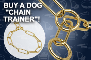 Chain Dog Collar