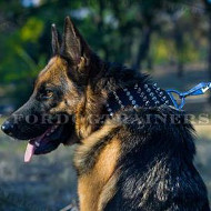 3 In Extra Wide Dog Collar for GSD with Spikes and Studs