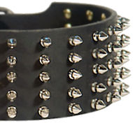 Extra Wide Dog Collar 3 inch Leather with Spikes