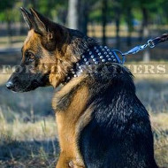 3 inch Wide Leather Dog Collar for German Shepherd