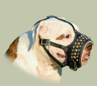 Soft Dog Muzzles for Bulldogs | American Bulldog Muzzle Padded