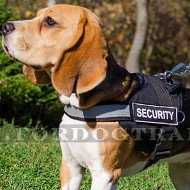 Beagle Harness UK | Reflective Dog Harness for Small Dogs