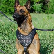 Belgian Shepherds Malinois Dog Harness with Pyramids