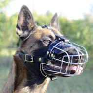 Wire Basket Muzzle for Belgian Malinois K9