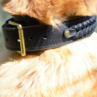 German Shepherd Dogs Collar | Braided Leather Dog Collar