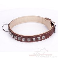 "Adorable Brown Leather Studded Dog Collar ""Cube"" Padded With Leather Lining"