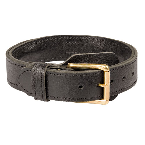 leather dog collar for Boxer dog